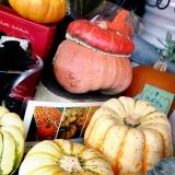 かぼちゃ*ハローウィン